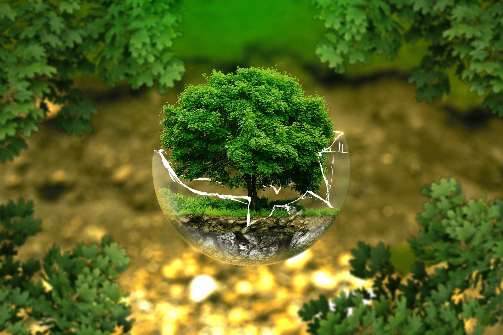 Gør noget godt for miljøet og spar samtidig penge